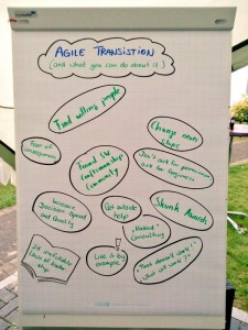 The result flip chart of the session about agile transitions and what you can do for it.
